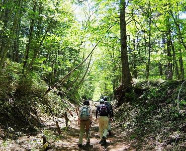 自然公園の望ましい利用に関する研究