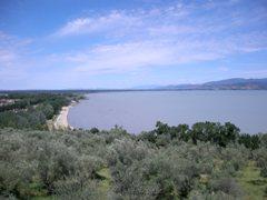 村が面しているトラジメーノ湖