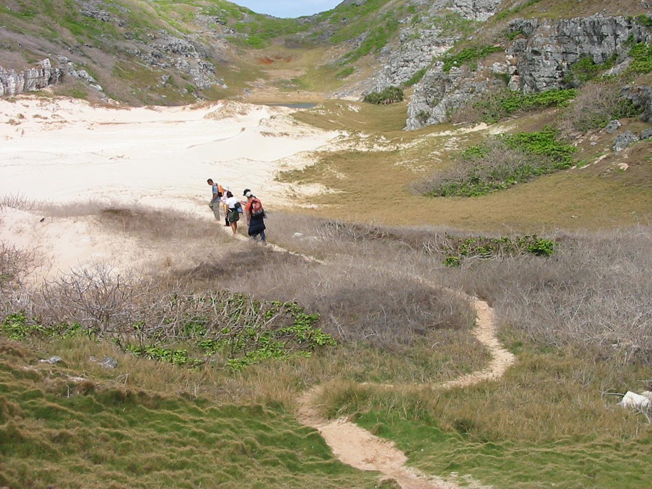 人が歩き、小径ができ、芝生の裸地化が進む