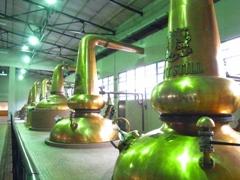 ポットスチルと呼ばれる蒸溜用の釜