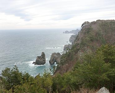 東日本大震災からの復興に観光は何を果たしたか(観光文化229号)