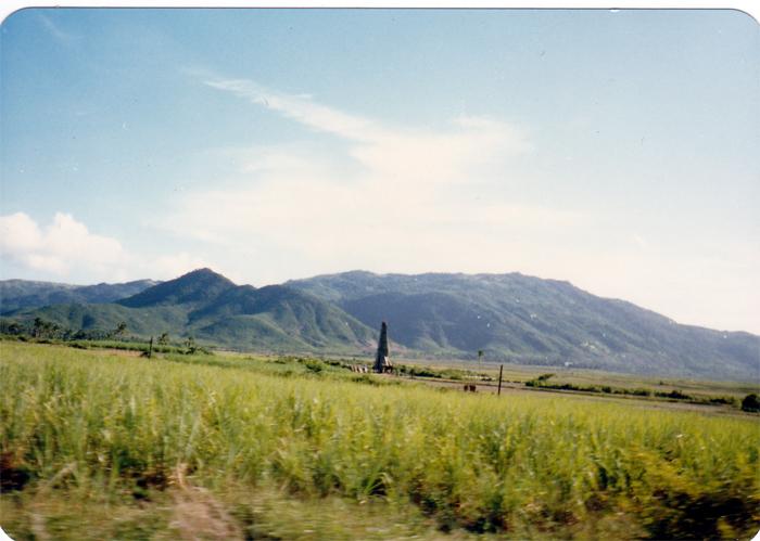 写真5 牙龍湾の野原(写真4の後背部)(小久保氏提供)