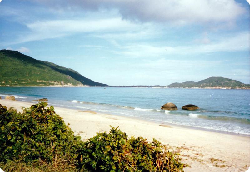 写真4 牙龍湾の海岸(小久保氏提供)